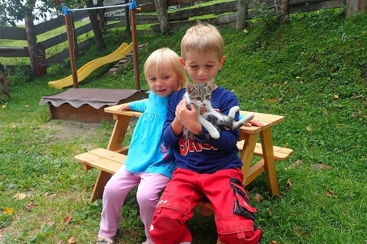 Tiere zum Streicheln - Biohof Maurachgut in Bad Hofgastein