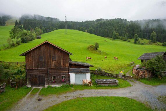 Ferienwohnung Bergblick, Ferienwohnungen am Biohof Maurachgut in Bad Hofgastein