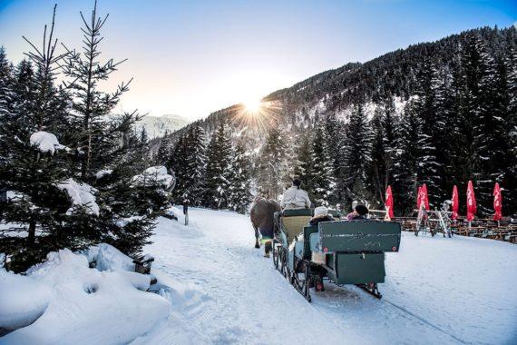 Pferdekutschenfahrten, Winterurlaub, Gastein, Salzburger Land